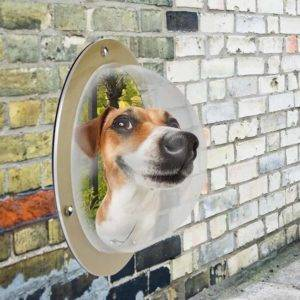 Pet Fence Window - Bringing The World To Our Pets