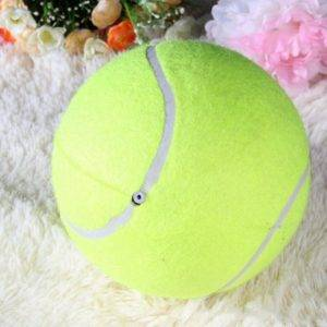 Giant Tennis Ball For Pets 7