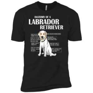 Anatomy Of A Labrador Retriever Premium Tee - Pet Lover Gift