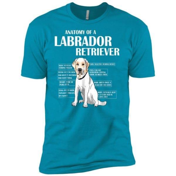 Anatomy Of A Labrador Retriever Premium Tee - Pet Lover Gift